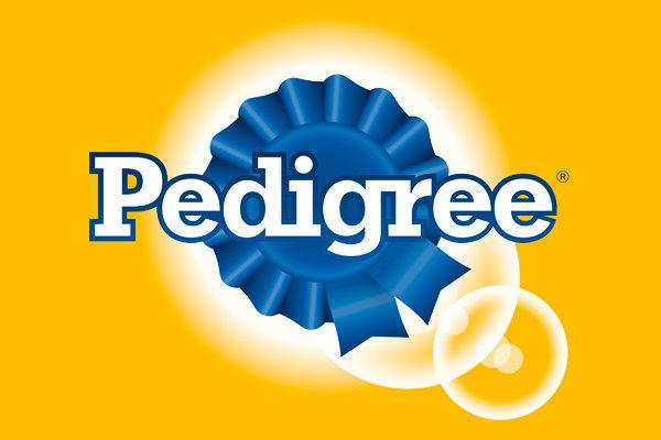 ração Pedigree